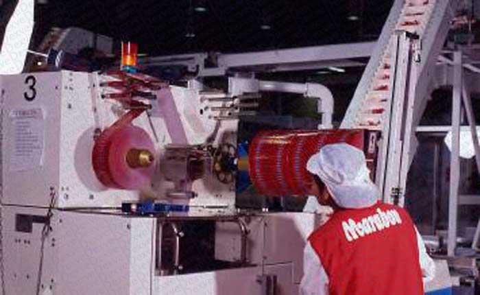 Manipulador Neumático de Sacos